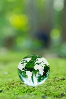 Fresh green and globe 1