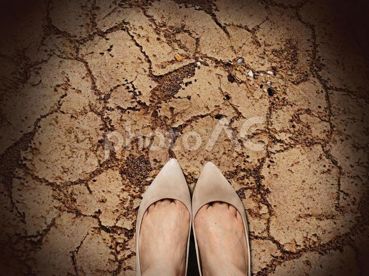 乾燥してひび割れた土の上の女性の足元の写真