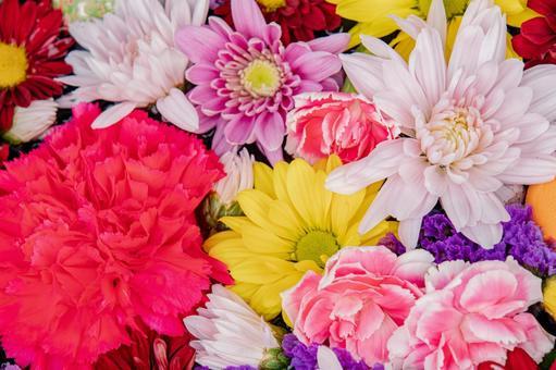 화려한 꽃 모아