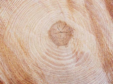 Casual wood grain plank texture log annual rings