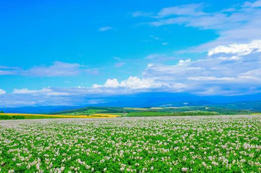 Hokkaido! Megumi on the ground of the actual hill!