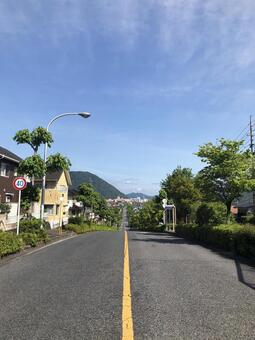 Cityscape with straight road (vertical)