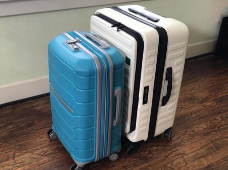 Suitcase carry case