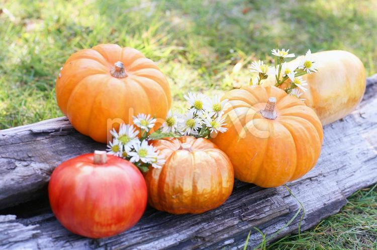 秋色アレンジの写真