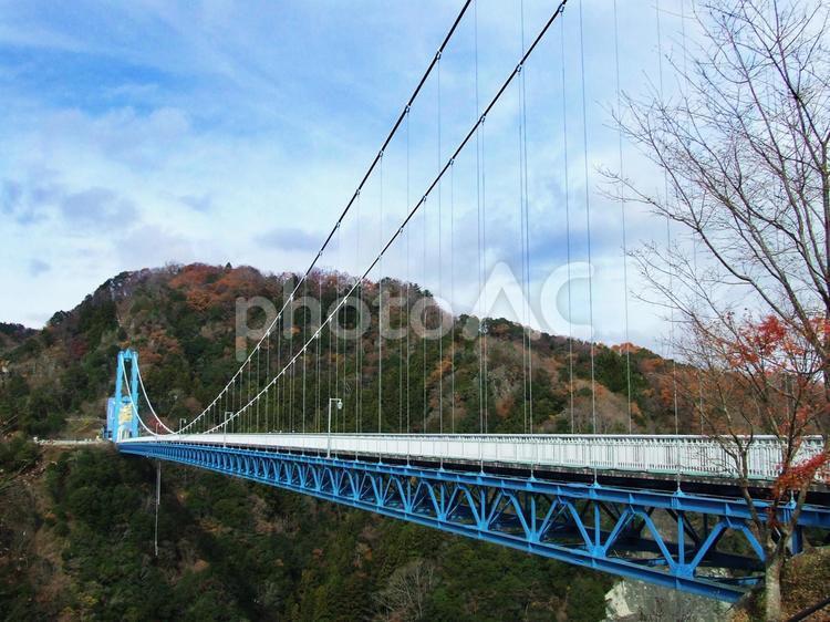 竜神大吊橋の写真