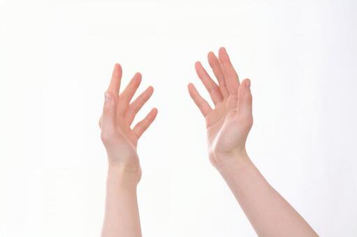 Hand parts (both hands) 11