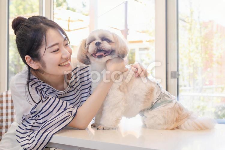愛犬と遊ぶ女性の写真