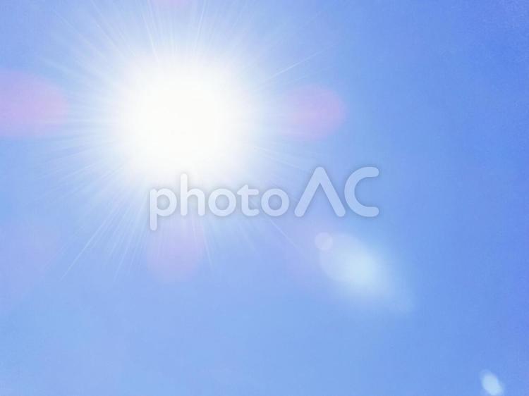 サンサン太陽さんの写真