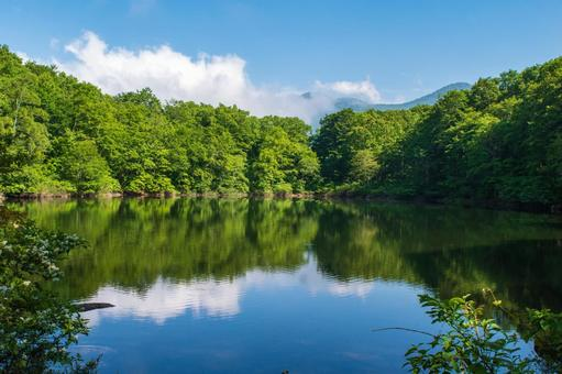 Sasagamine Kogen Sennin Pond