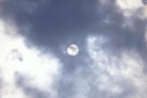 한낮의 태양