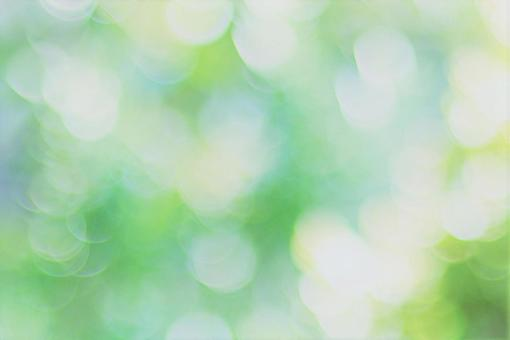 Texture of green and light Sunbeams of green leaves in the image of summer
