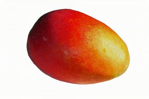 沖繩縣的芒果#11