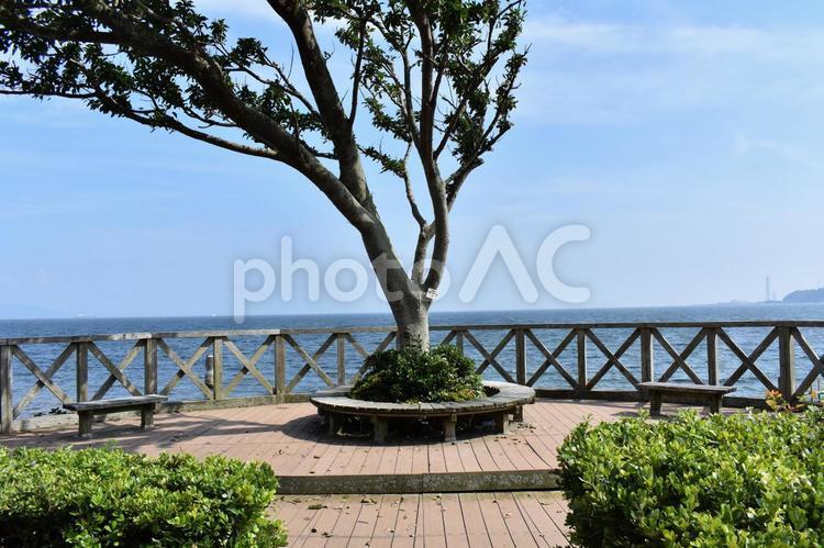 観音崎自然公園からの眺めの写真