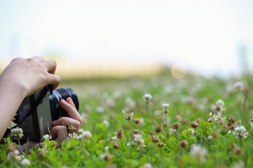 풀밭에 카메라를두고 손
