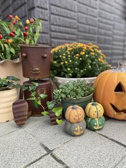 Halloween garden 1