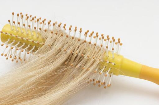 Hair and brush 3