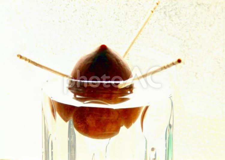 アボカド 種の写真