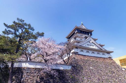 봄의 푸른 하늘 고쿠라 성