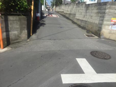 Danger T word Road Sakura