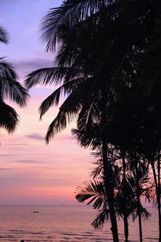 Beach resort 291