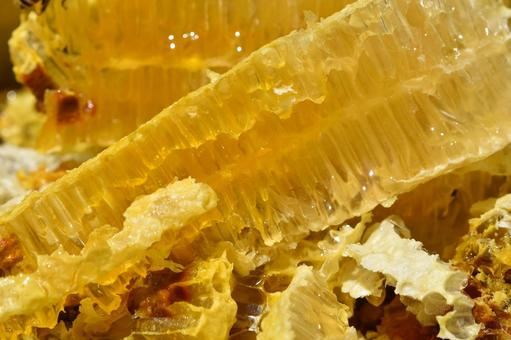 Nest honey SDGs food sustainable close-up immediately after removal from the honeycomb Material background