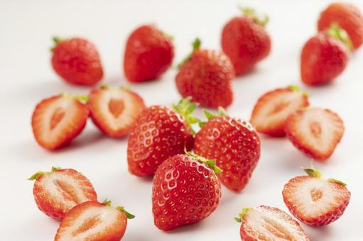 딸기 딸기