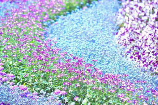 FlowerFestibal