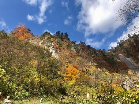 Autumn leaves in Akita Mountain and sky