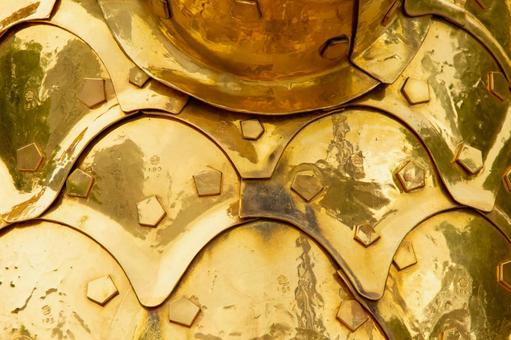 Gold killer whale scales