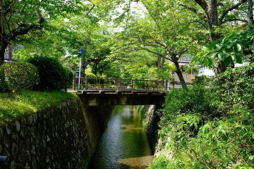 Kyoto philosophy road