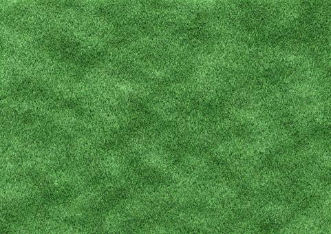 Texture 【lawn】