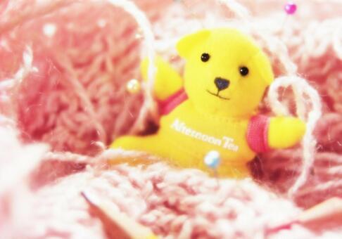 熊填充动物的对象