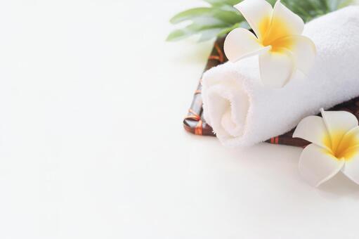 Spa · Esthetic White Background