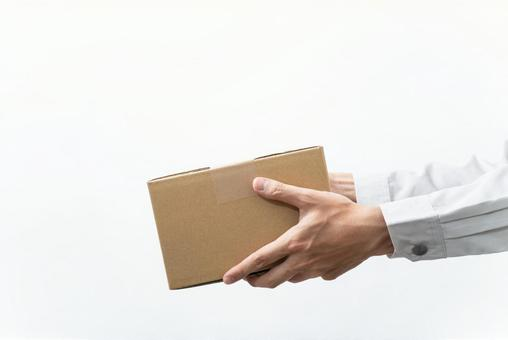 Courier who delivers the package White background