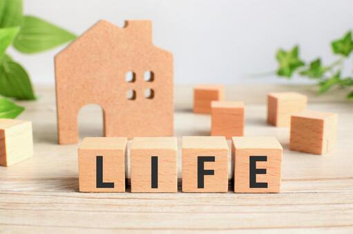 LIFE life plan