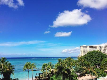 하와이 1
