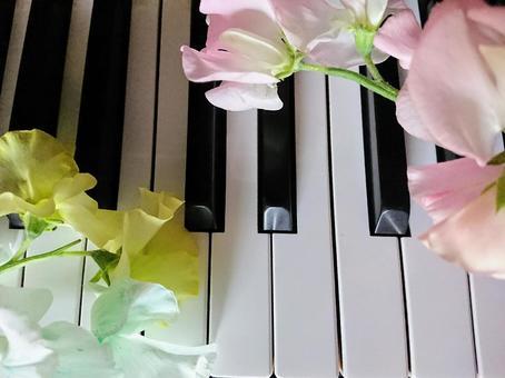 화려한 피아노 2
