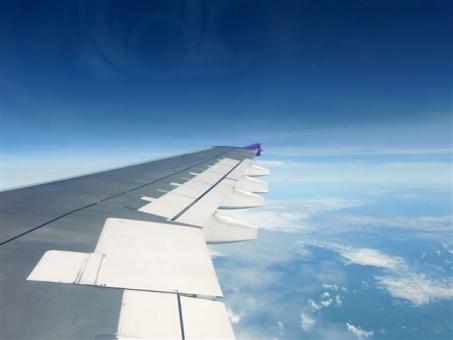 비행기의 날개