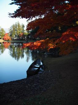 Autumn leaves, pond and boat