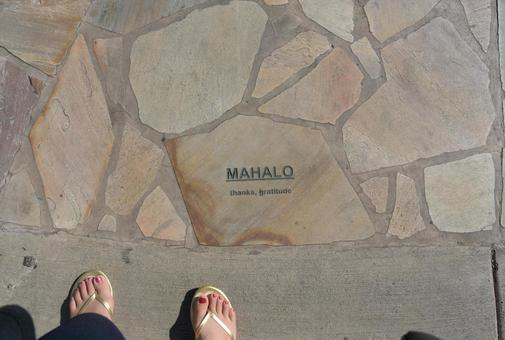 MAHALO (Hawaii's fashionable ground)