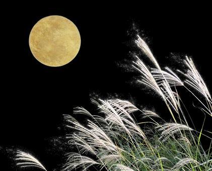 Full Moon and Susuki (Lame Processing Available) Full Moon & Susuki