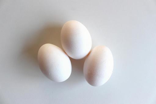Egg (bright color tone up)
