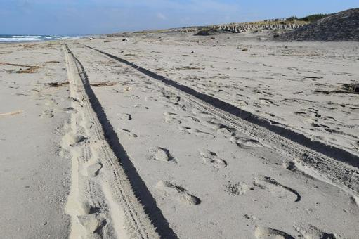 모래 상습