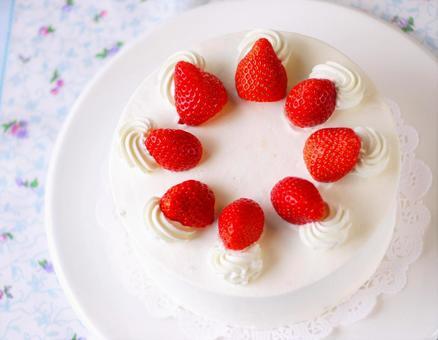 Short cake 5