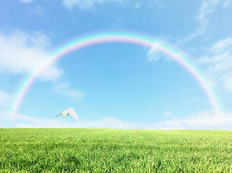 Paper plane to the rainbow over the meadow 1
