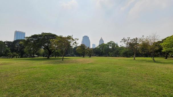 Lawn park