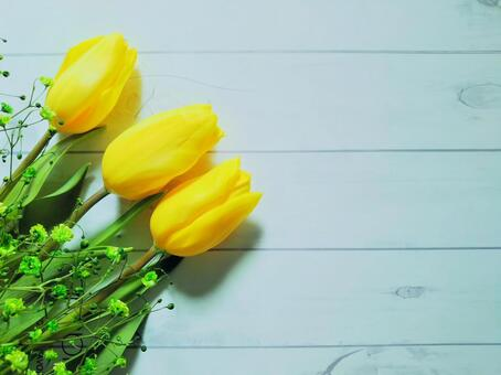 Tulips and hazy grass white wood grain background