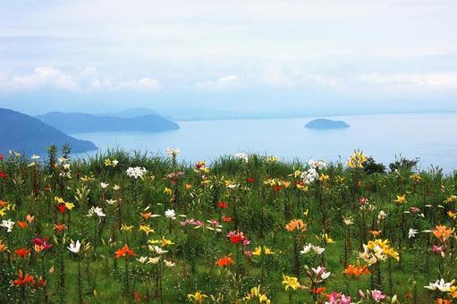 Hakodate mountain slope overlooking Lake Biwa Yurien