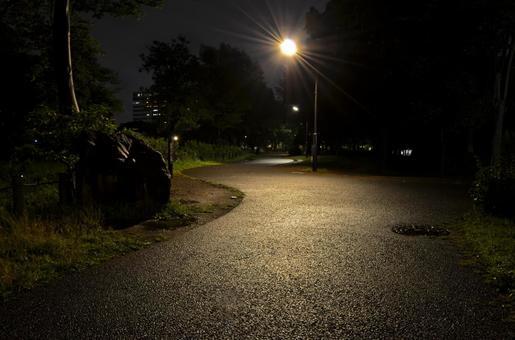 "Night Park Dark Walking Path At ""Ogunohara Park"" in Arakawa Ward"