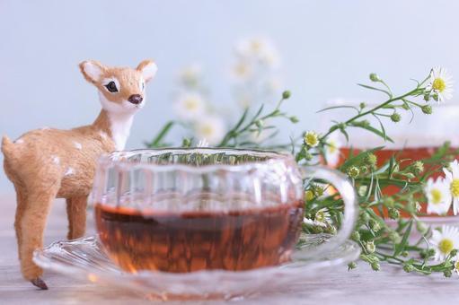 Bambi and tea time